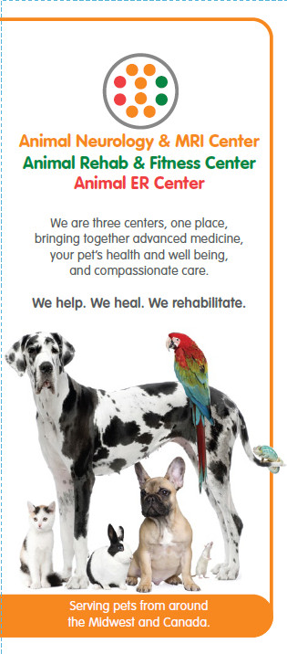 New collateral piece for specialty hospital